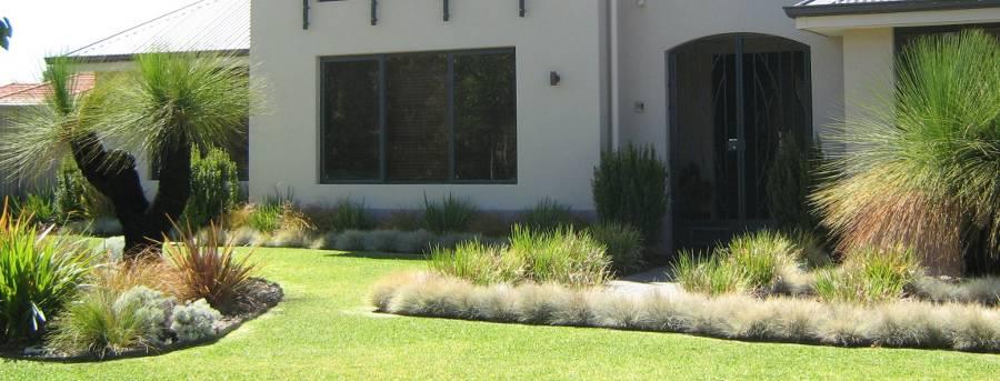 Grasstrees Australia | Premium Provider of Quality Native ...